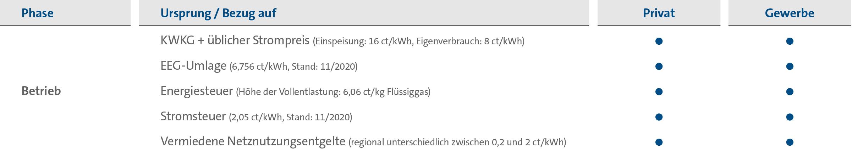 Tabelle: Förderoptionen für flüssiggasbetriebene BHKW, Stand: Dezember 2020.